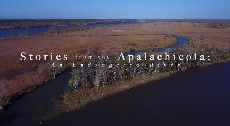 WFSU Documentary & Public Affairs: Stories from the Apalachicola: An Endangered River